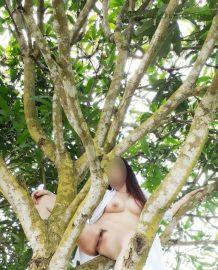 รูปโป๊ทางบ้านแก้ผ้าปีนต้นไม้โชว์ให้ผัวถ่าย